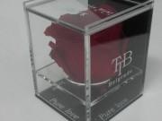 proizvodi-od-klirita-pk-kutije-cvecare