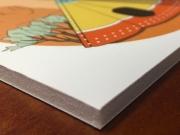 proizvodi-od-klirita-karton pena stampa